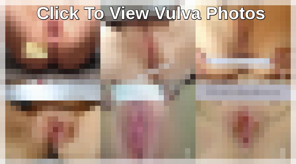 Beautiful Vulva